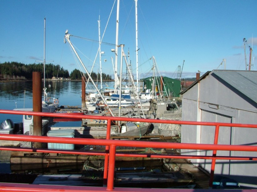 Fishing boats at the wharf in Fanny Bay on Vancouver Island in B.C., Canada