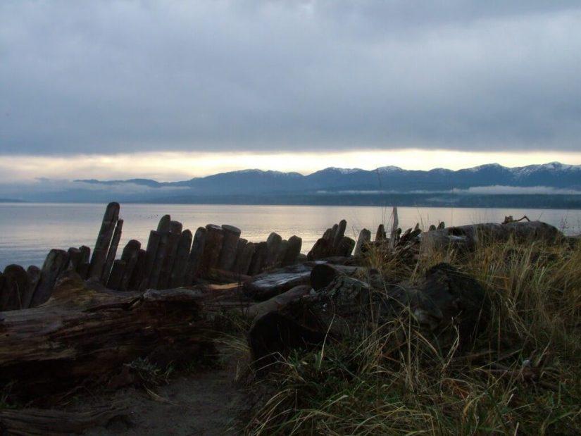 shoreline at comox - british columbia
