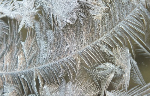 frost forms on a window pane - toronto 4
