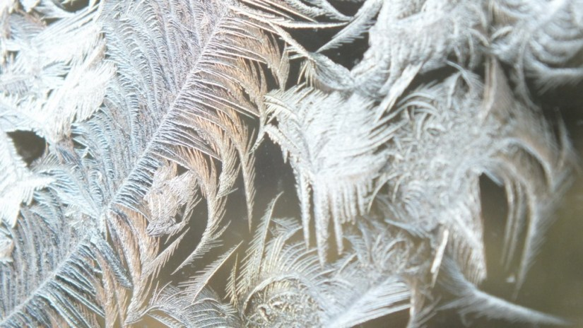 frost forms on a window pane - toronto 5