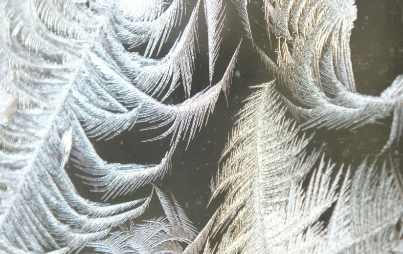 frost forms on a window pane - toronto 6