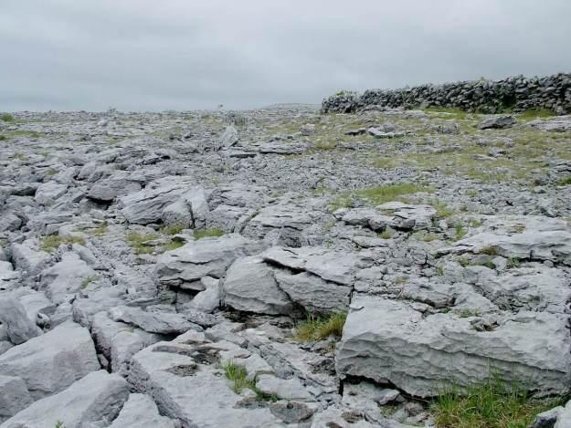 exposed limestone bedrock in the burren - burren national park - ireland 2