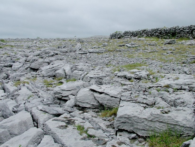 exposed limestone bedrock in the burren - burren national park - ireland 2