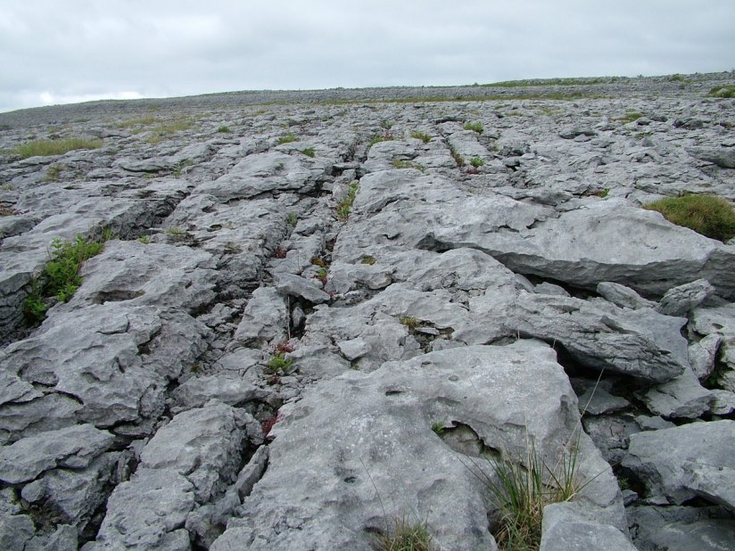 exposed limestone bedrock in the burren - burren national park - ireland