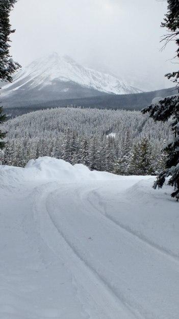 pipestone trail roadway in winter - banff national park
