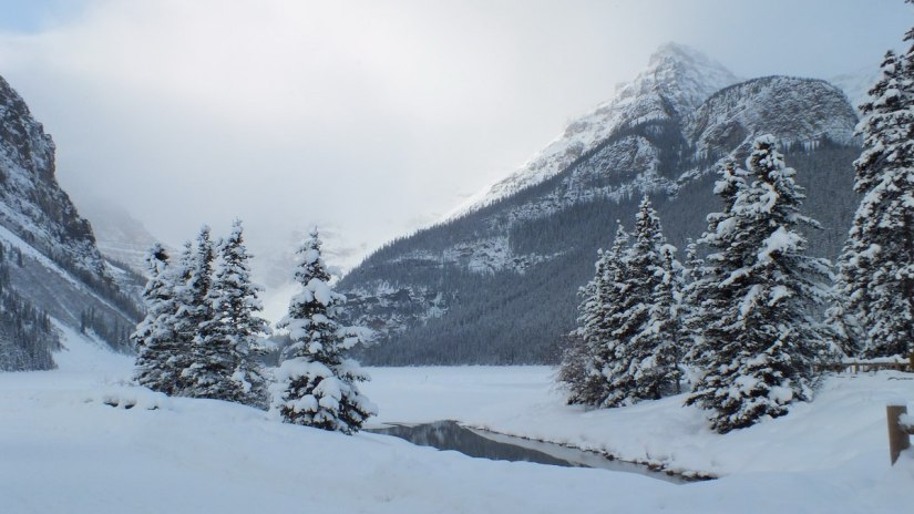 Heavy snow on the mountains at Lake Louise in Banff National Park, Alberta, Canada
