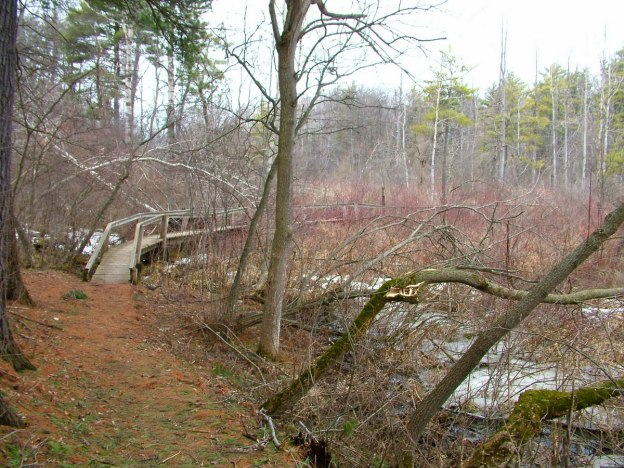 boardwalk_dickson Conservation area_ontario