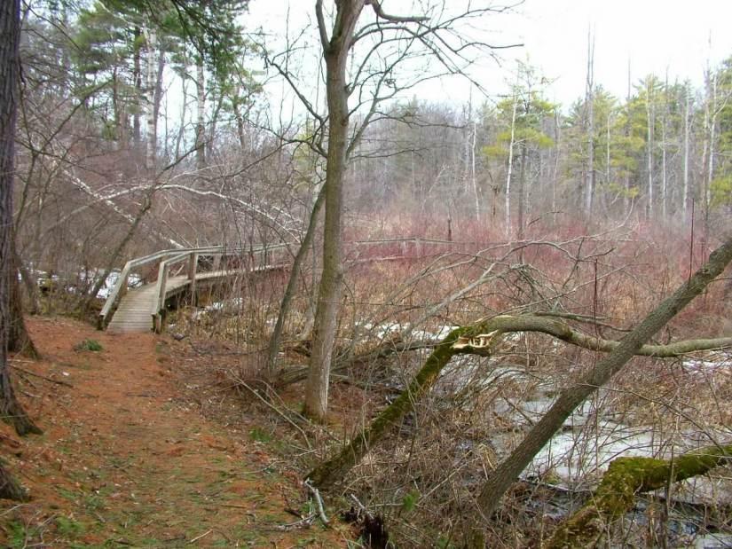 boardwalk_dickson Conservation area_ontario