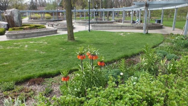 Rosetta McClain Gardens - toronto