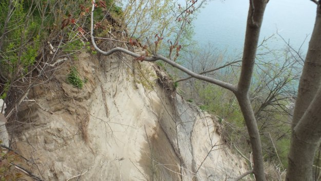 scarborough bluffs at rosetta mcclain gardens - toronto 2