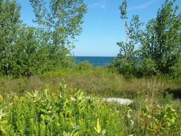 tommy thompson park - toronto
