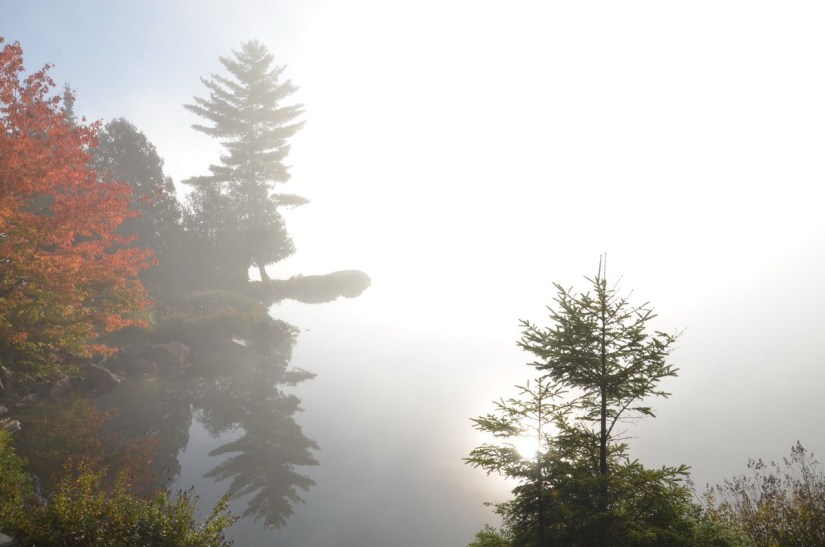 fall colors in algonquin park - fall 2014 pic 22