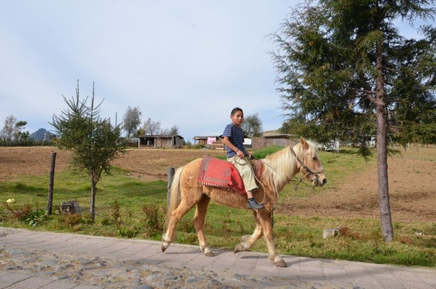 boy riding horse in mexico