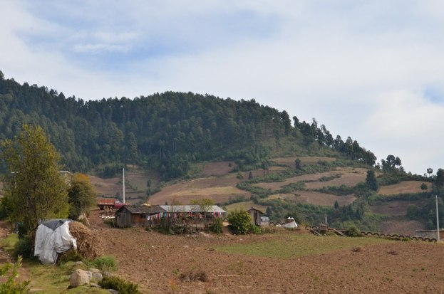 farms near angangueo, mexico