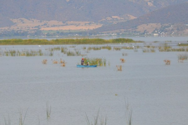 Fishermen in boat on Lago de Cuitzeo, in the Michoacán State, Mexico