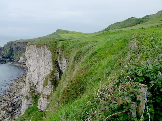 An image of the cliffs and green fields near Carrick-a-Rede Island in Northern Ireland. Photography by Frame To Frame - Bob and Jean.