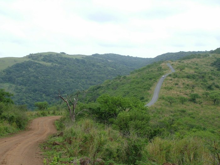 hluhluwe imfolozi park, hilltop camp, south africa