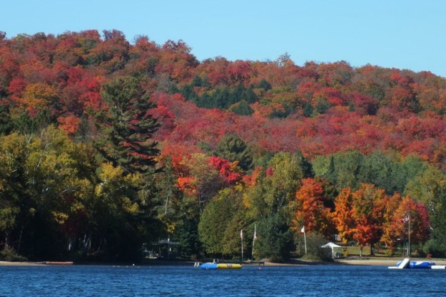 fall colors, oxtongue lake, ontario, pic 1