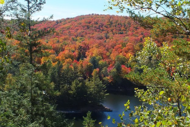 fall colors, oxtongue lake, ontario, pic 3