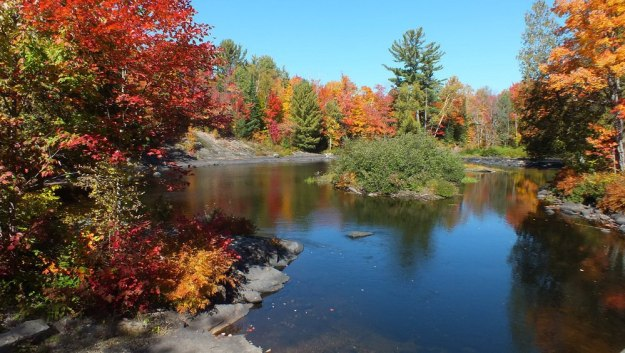 fall colors, oxtongue river, ontario, pic 5