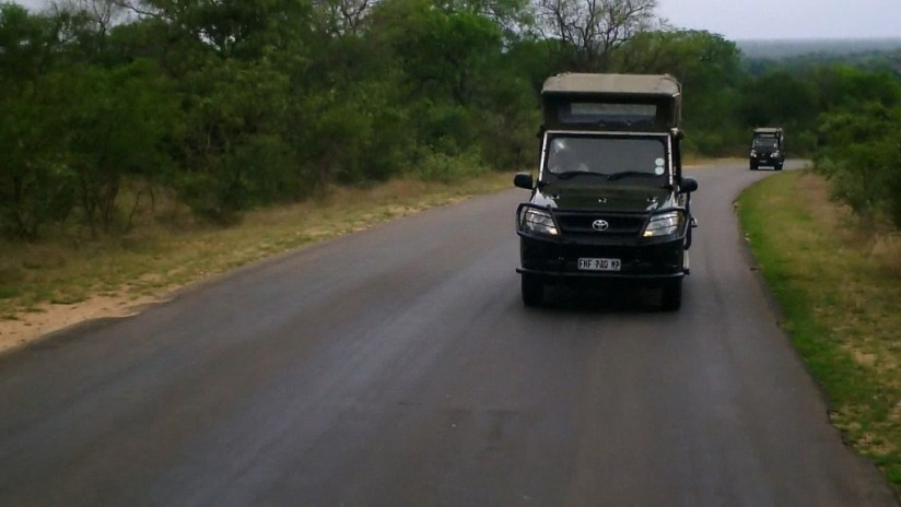 early morning drive, kruger national park, south africa, pic 4