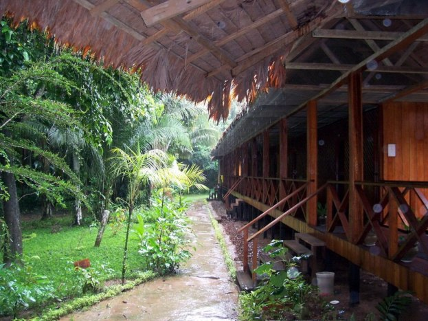 Heavy rains falling at Sandoval Lake Lodge, Lake Sandoval, Amazon Delta, Peru