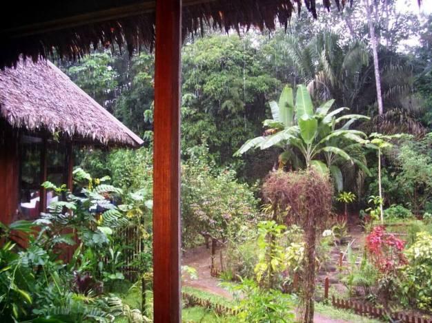 Heavy rains falling at Sandoval Lake Lodge, Lake Sandoval, Amazon Delta, Peru