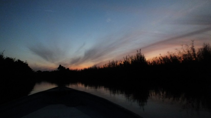 Photo of dusk settling over the mangrove swamp near San Blas, Mexico