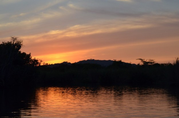 Photo of the sunset in the mangrove swamp near San Blas, Mexico