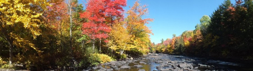 fall colors on oxtongue river, ontario, canada