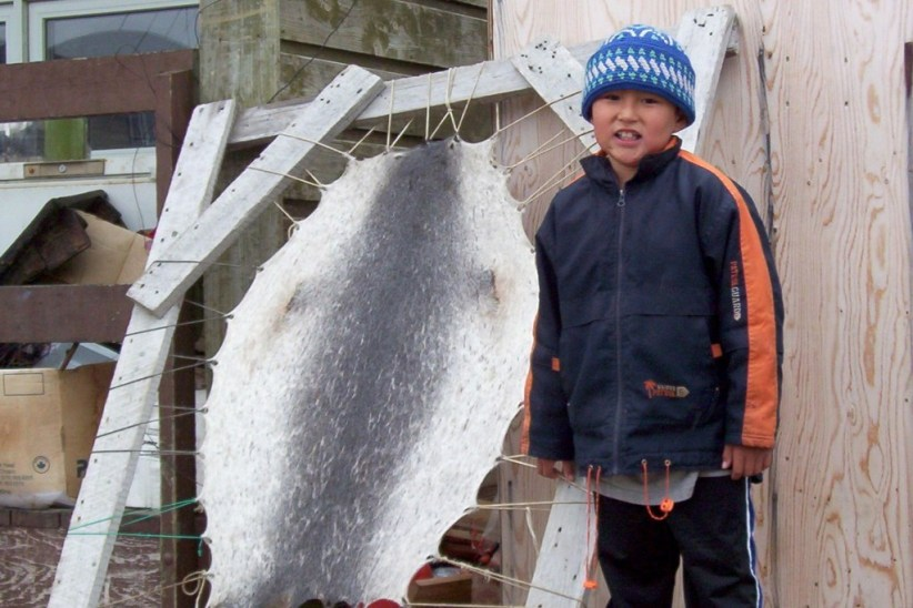 photograph of an Inuit boy standing beside a ringed seal skin stretched and drying in Pangnirtung on Baffin Island, Nunavut, Canada.