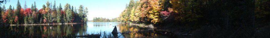 tea lake shoreline, algonquin park, ontario, canada, 2