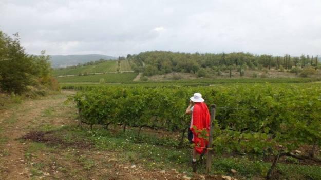 Jean in vineyard at Il Colombaio di Cencio, Gaiole, Chianti, Tuscany, Italy