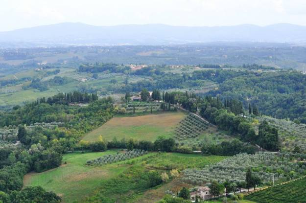 Image of the Vineyards and orchards near Il Colombaio di Cencio, Gaiole, Chianti, Tuscany, Italy