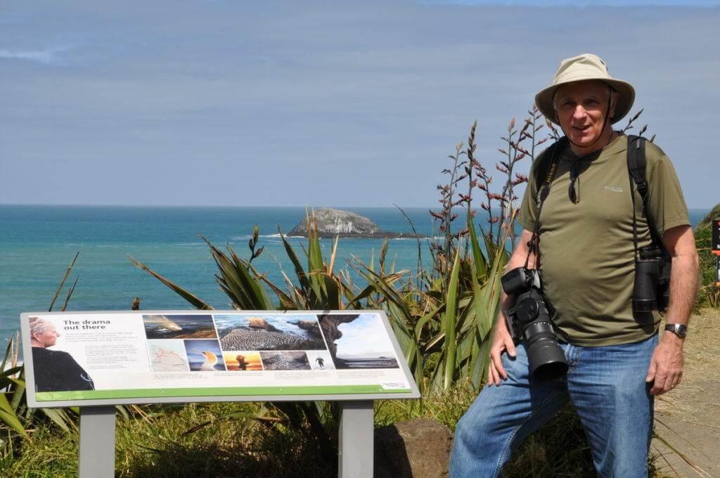 bob-at-the-muriwai-gannet-colony-waitakere-new-zealand