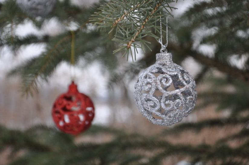 decorations-on-the-christmas-tree-at-lynde-shores-conservation-area-whitby-ontario-2