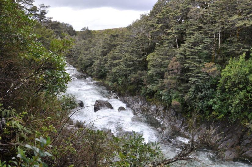 An image of the Whakapapanui Stream in Tongariro National Park in New Zealand. Photography by Frame To Frame - Bob and Jean.