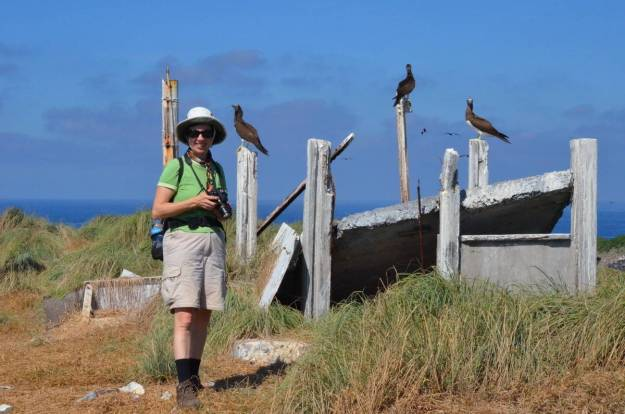 An image of Jean standing in front of a group of Brown booby birds on Isla Isabel in Mexico. Photography by Frame To Frame - Bob and Jean.