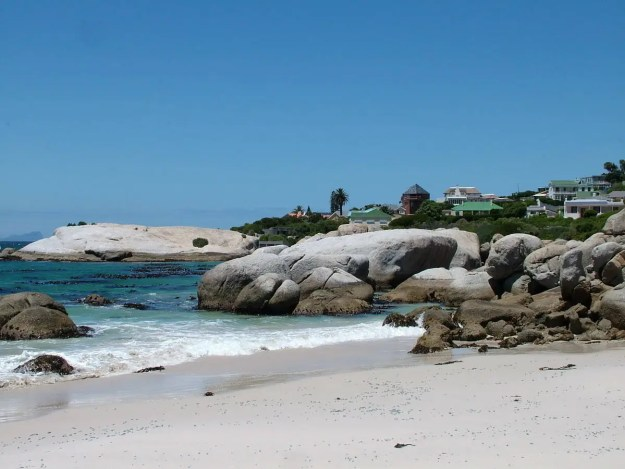 ocean shoreline at boulders beach park, table mountain national park, south africa