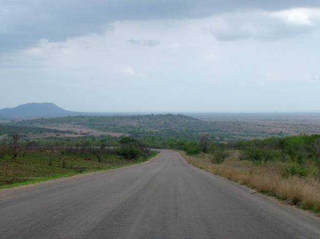 An image of a paved roadway across the savanna in Kruger National Park in South Africa.