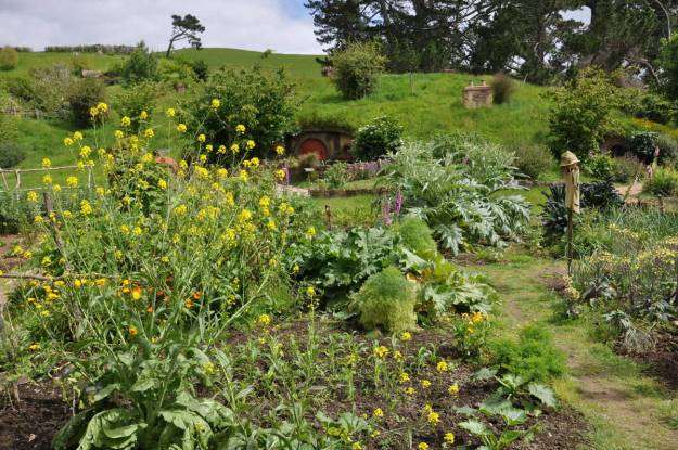 An image of the community garden filled with various flowers and plants at Hobbiton in New Zealand. Photography by Frame To Frame - Bob and Jean.