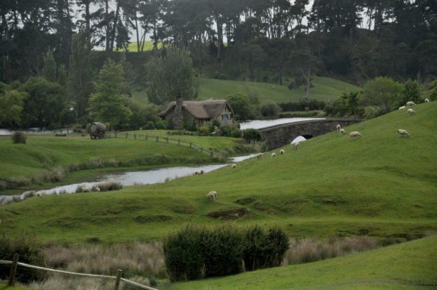 An image of the green fields covered in sheep sitting in front of the old watermill at Hobbiton in Matamata, New Zealand. Photography by Frame To Frame - Bob and Jean
