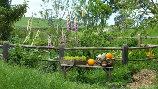 An image of a various vegetables sitting on a bench beside a garden at Hobbiton in Matamata, New Zealand. Photography by Frame To Frame - Bob and Jean