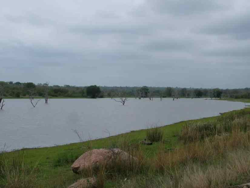 An image of Mpondo Dam in Kruger National Park, South Africa. Photography by Frame To Frame - Bob and Jean.