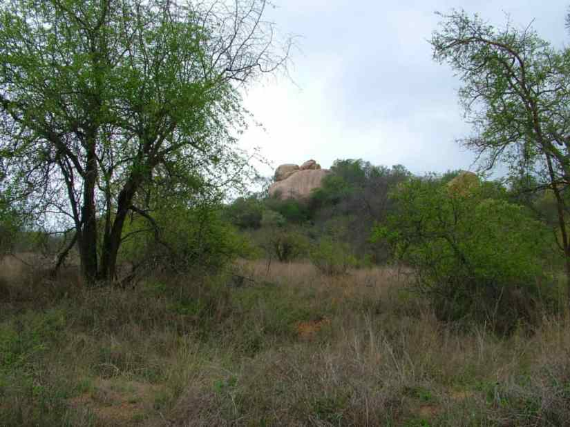 An image of Shirimantanga Hill in Kruger National Park, South Africa. Photography by Frame To Frame - Bob and Jean.