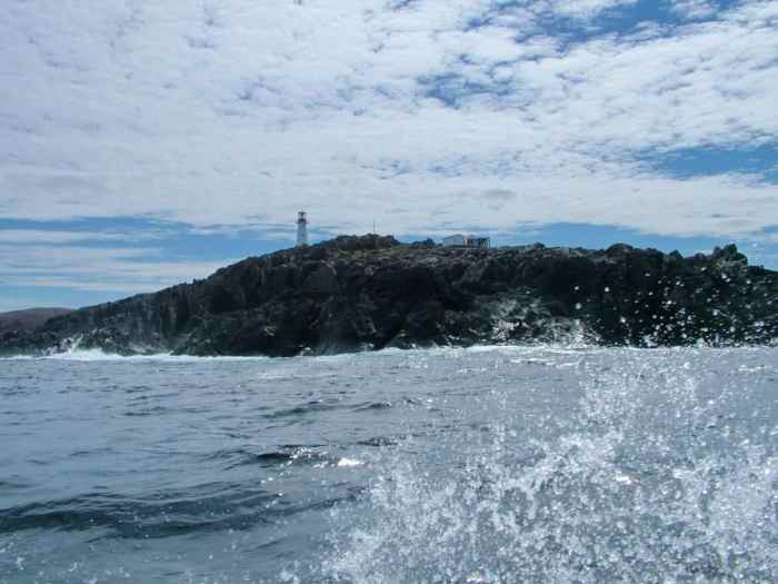 quirpon island as seen from a boat, newfoundland, canada