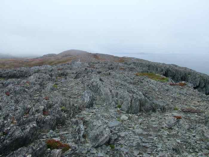 rocky plateau on quirpon island, newfoundland, canada