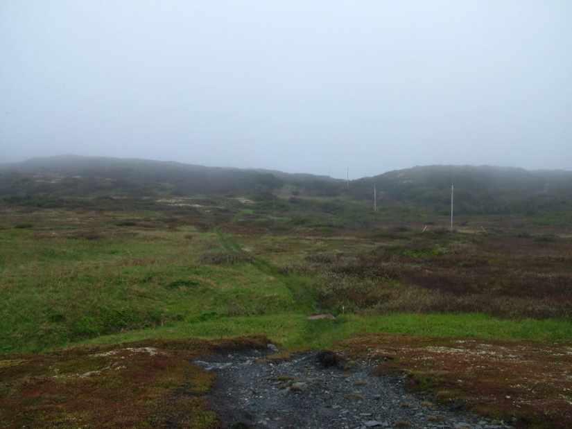 landscape on quirpon island, newfoundland, canada