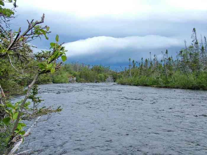 baker's brook below baker's brook falls in gros morne national park, newfoundland