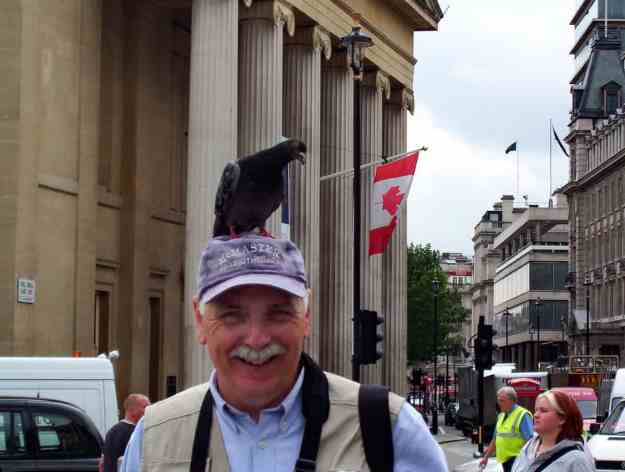 An image of pigeon sitting on a person's head in Trafalgar Square in London, England.